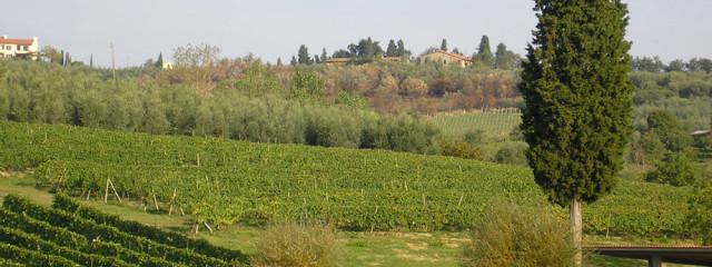 """Consulta: Toscana, Incostituzionali Gli Articoli Della LR 65/2014 Su Sanatoria """"differenziata"""""""