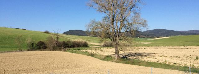 Toscana: Esempio Applicativo Sanzionamento Parziali Difformità Ante 1985