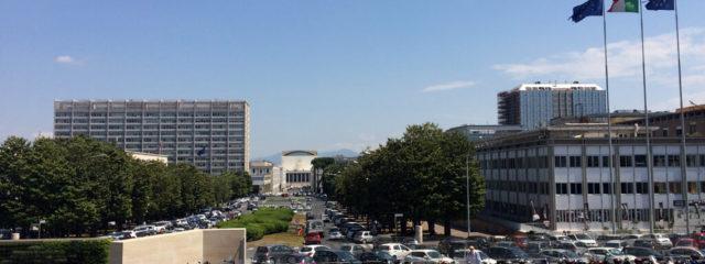 Le Definizioni Del DPR 380/01 Prevalgono Sugli Strumenti Urbanistici Generali E Regolamenti Edilizi